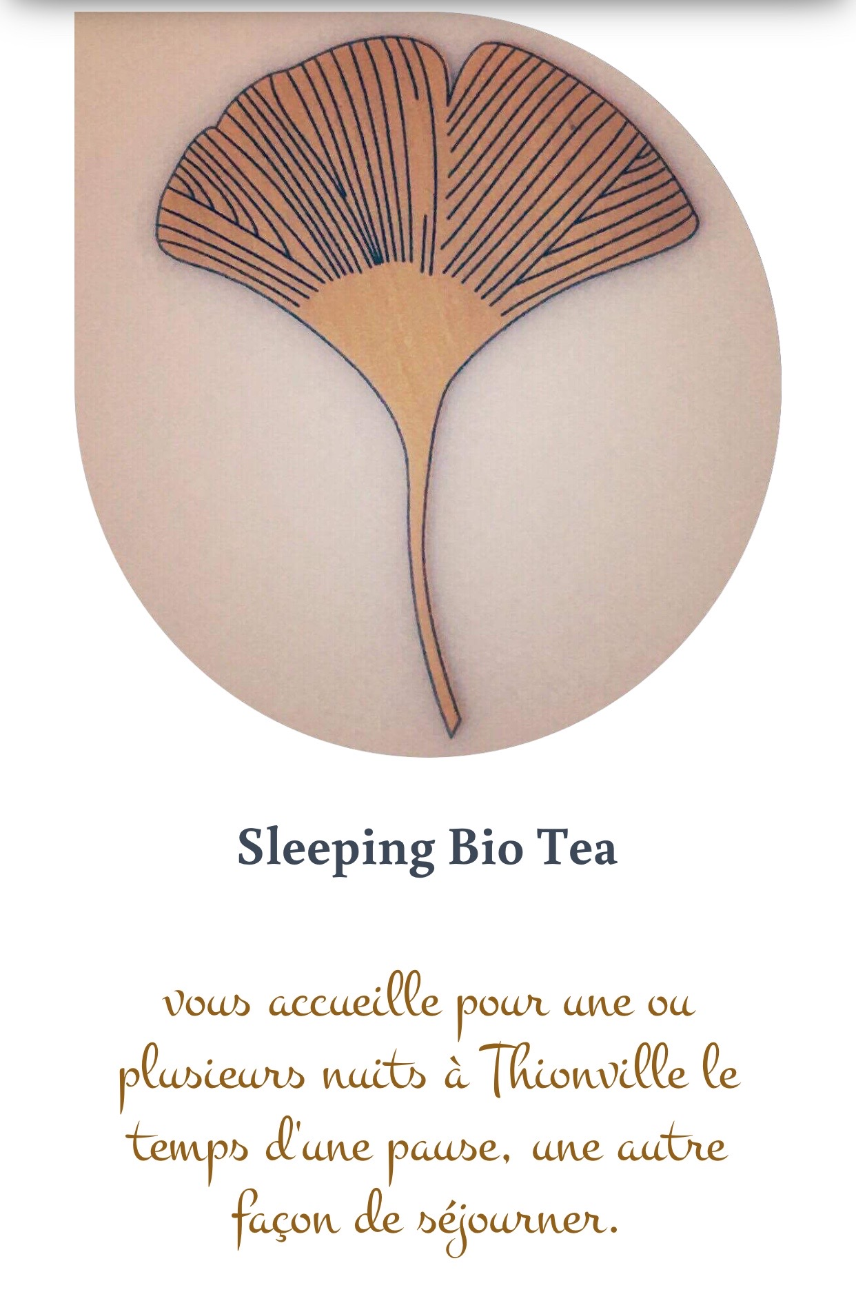 logo Sleeping Bio Tea
