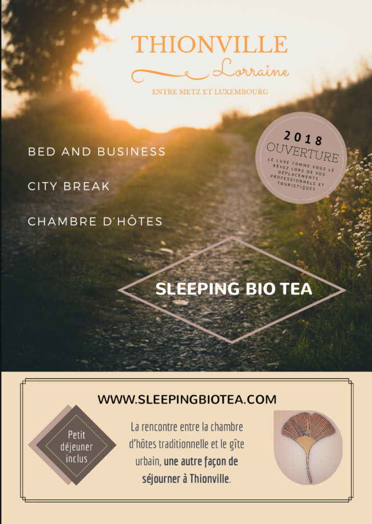flyer Sleeping Bio Tea à Thionville