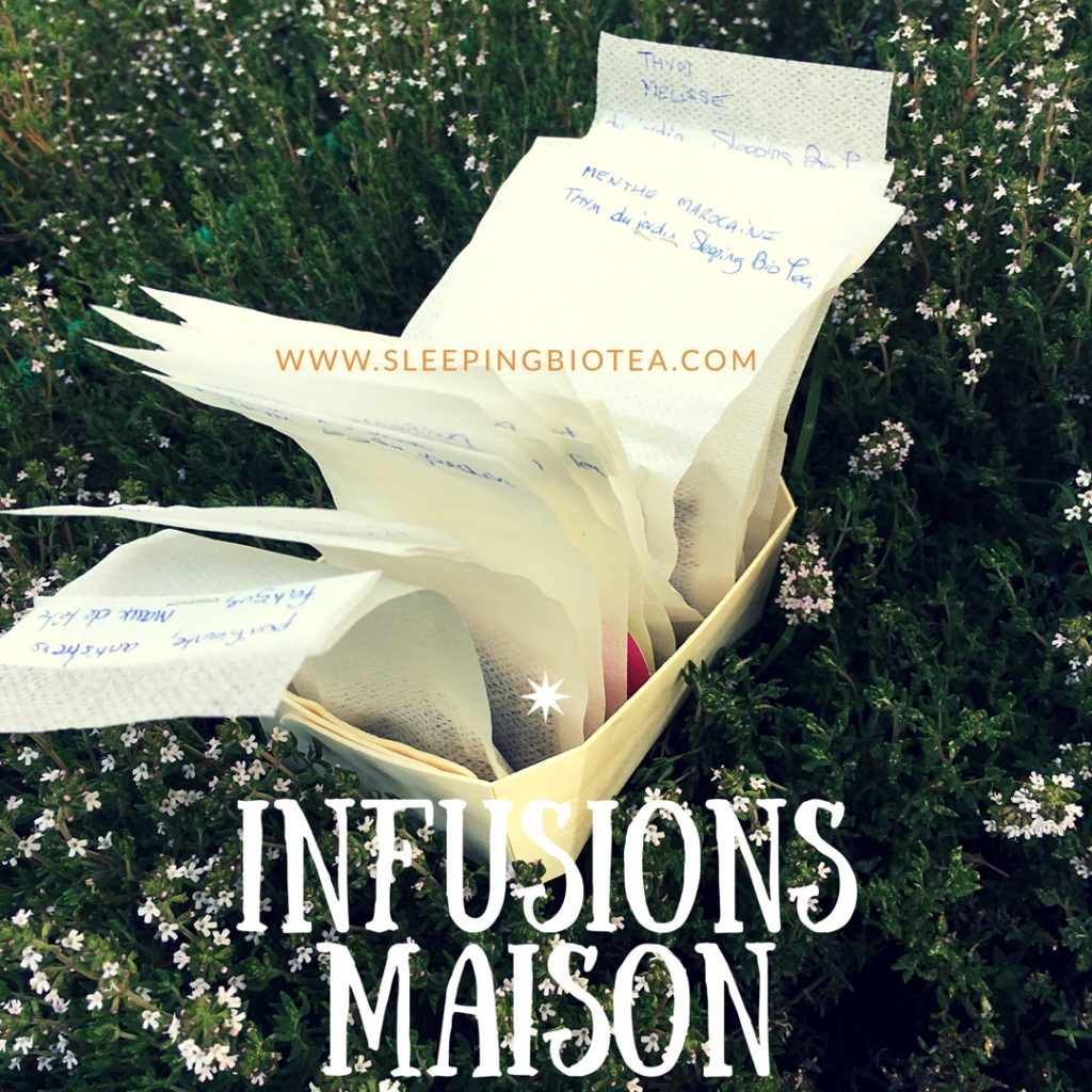 Infusions maison du jardin Sleeping Bio Tea